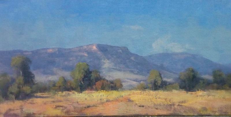Dry Landscape Blackwater (40x20cm)