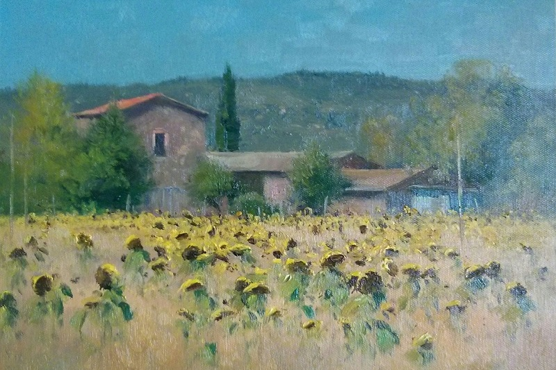 Tuscany Sunflower Farm