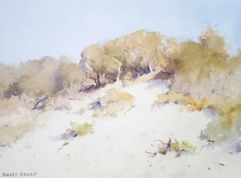 Dune Study Hawsnest (41x30cm) wc