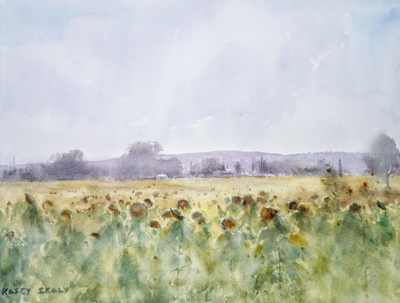 Sunflowers Tuscany (41x30 cm) wc